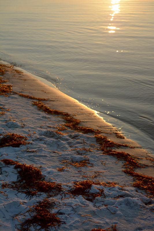 shoreline-2