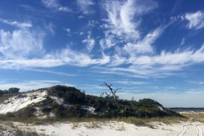 relic-dune-oct-10