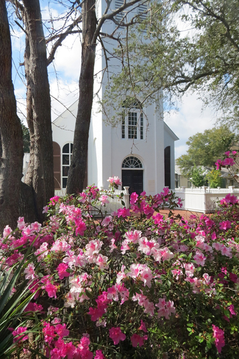 azaleas-old-church