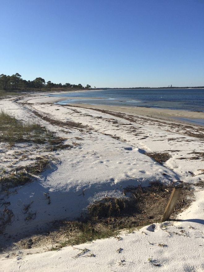 december-shoreline
